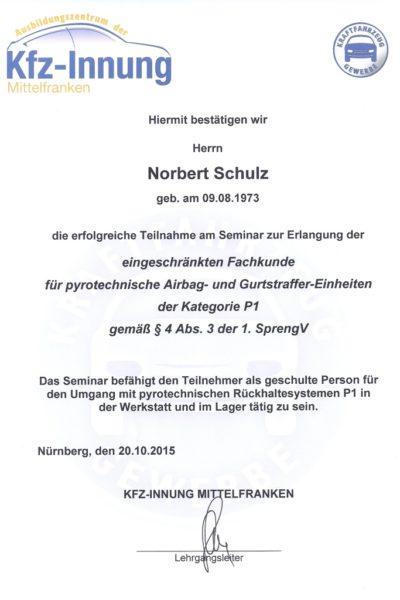 Norbert Airbag 2015